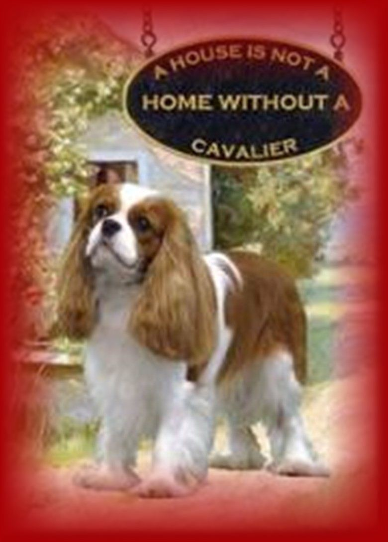Home Sweet Home Cavalier King Charles Spaniels